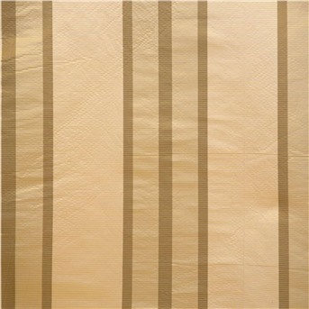 Ткань CANNET 2212 IVORY BROWN BEIGE