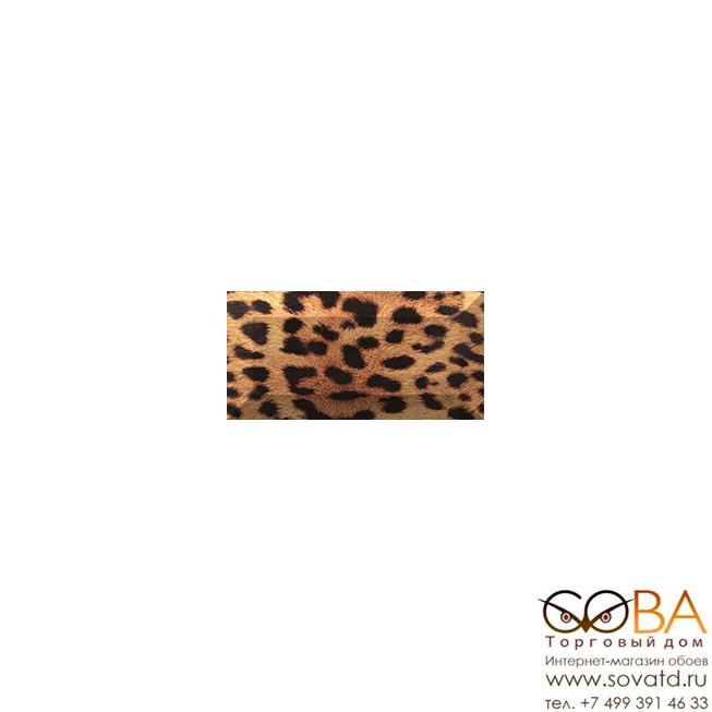 Бордюр Africa  рельефный br1020D210-2 20х10 купить по лучшей цене в интернет магазине стильных обоев Сова ТД. Доставка по Москве, МО и всей России